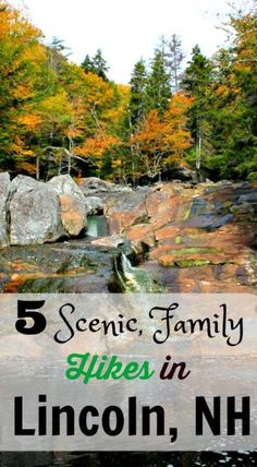 5 Scenic, Family Hikes around Lincoln New Hampshire