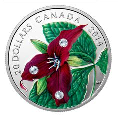 Canada 20 Dollars Silver Coin 2014 Red Trillium with Swarovski Crystal Dew Drop Elements Canadian Things, Canadian Artists, Canadian History, Gold Bullion, World Coins, Rare Coins, Blossom Flower, Coin Collecting, Silver Coins