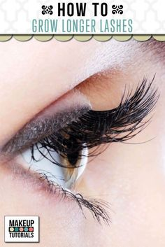 Makeup Tutorials - How To Grow Longer Lashes | Tips & Tricks For A Fast Longer Eyelashes By Makeup Tutorials http://makeuptutorials.com/makeup-tutorials-how-to-grow-longer-lashes/