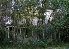 Old creepy house | creepy old house in gainesville i stumbled across this house near ...