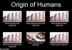 Correction: what SOME Christians think happened without evolution. Most of us regard evolution as a valid method of creation. Anti Religion, Les Religions, E Mc2, Biologist, Charles Darwin, Critical Thinking, Christianity, At Least, Faith