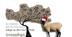 Adopt an olive tree as a unique Christmas present and receive three bottles of unadulterated extra virgin olive oil from your grove. http://www.terraadopt.com/adopt-an-olive-tree