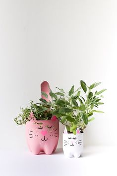 DIY Soda Bottle Kitty Cat Planters are simply cute. Cut the soda bottles so as to make them look like the kitty shown in the picture. Paint them with your favorite color. Recycled Planters, Diy Planters, Face Planters, Recycled Crafts, Garden Planters, Gravel Garden, Cat Crafts, Diy And Crafts, Crafts For Kids