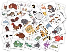 Animal Flash Cards - Bring these wild guys into your home or classroom! PDF comes with all the images listed below plus corresponding word cards. alligator, ant, anteater, bee, boar, cat, chick, chicken, chimp, cow, crab, dog, dodo bird, dragon fly, fish, fly, gorilla, hippo, horse, kiwi bird, lion, mole, mouse, octopus, owl, penguin, proboscis monkey, pig, possum, rabbit, rat, rooster, shark, sheep, spider, snake, tiger, turkey, turtle, whale, worm, white tiger, zebra, zoo