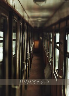 Hogwarts Express... now, where's that plump, friendly witch who pushes the sweet cart?