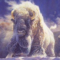 White Buffalo by Chuck Cirino, via SoundCloud