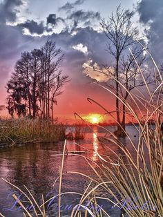 winter sunset paintings - Google Search