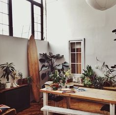 High ceiling check, surfboard check, wood tables, plants, etc.
