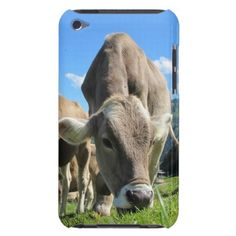 Cow Grazing iPod Touch Case