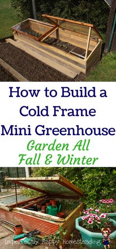 How to Build a Cold Frame Mini Greenhouse. Garden All Fall & Winter.