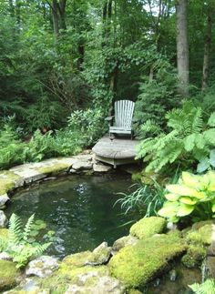 13 Top Ponds Landscape Tips