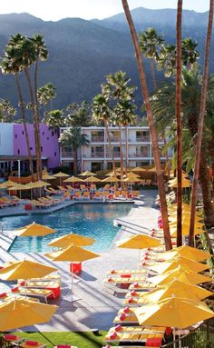 Saguaro Palm Springs adds vibrancy to the muted desert landscape.