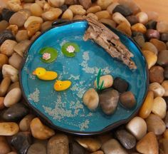 how to: miniature pond in a jar lid