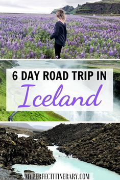 Ready for 6 days in Iceland? With massive waterfalls on every corner, & dramatic black sand beaches. Iceland is an absolute dream. Iceland Travel Tips, Iceland Road Trip, Road Trip Europe, Road Trip Destinations, Europe Travel Guide, Travel Guides, Road Trip Hacks, Road Trips, Les Cascades