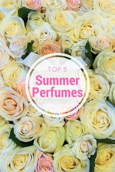Top 5 Summer Perfumes- With the weather heating up outside, here's our top 5 summer fragrances to have you wafting gently through the summer months. After trying just about every fragrance on the market these are the best fragrances we've found for summer.