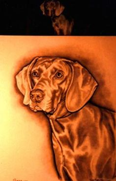 Paintings by Vicki  Pencil Portrait of a dog