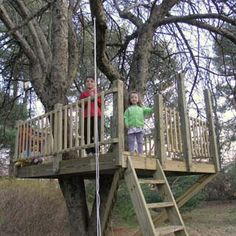 Image from http://treehousebydesign.com/WP/wp-content/uploads/2012/04/platformART.jpg.