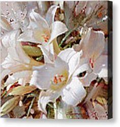White lilies Canvas Print by Ramil Gappasov
