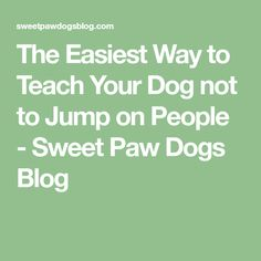 As a dog trainer, I get hired to teach dogs to stop jumping up on people more than any other behavior modification plan I have. It's typically from well-meaning dog owners who used to let the… Support Dog, Behavior Modification, Dog Items, Dog Hacks, Dog Boarding, Horse Care, Dog Behavior, Dog Training Tips, Dog Owners