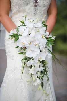 Bridal Wedding Portait with White Orchid Cascading Wedding Bouquet Picture by Tampa Bay Wedding Photographer Marc Edwards Photographs Orchid Bouquet Wedding, Cascading Wedding Bouquets, Wedding Flower Guide, Bride Bouquets, Bridal Flowers, Floral Wedding, Wedding White, White Orchid Bouquet, Cascading Flowers