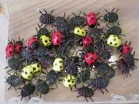 An entire unit on Bugs for preschool including book ideas, songs, activities, food, can crafts. Preschool Bug Theme, Preschool Library, Preschool Learning Activities, Preschool Curriculum, Preschool Science, Preschool Lessons, Preschool Activities, Kindergarten, Grid Game
