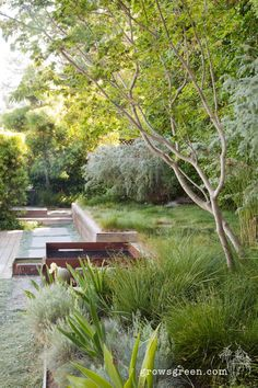 Modern landscape design company that specializes in residential drought tolerant gardens. Landscape And Urbanism, Landscape Design, Modern Landscaping, Backyard Landscaping, Fire Pit Area, Exposed Concrete, Organic Modern, Architectural Features, Yard Design
