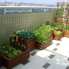 Grow Food, Not Lawns site - full of gardening ideas