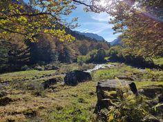 #Autumn #Occitanie #WalkingInNature