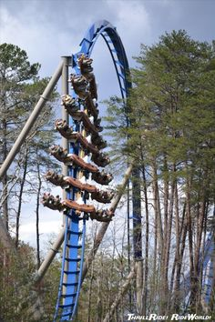 Dollywood - Wild Eagle