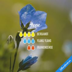 Hope - Essential Oil Diffuser Blend