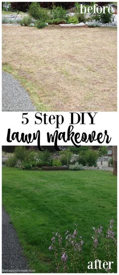 5 Step DIY Lawn Makeover using Scotts