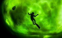 A diver swimming beneath thick ice is silhouetted against the green glow of the Northern Lights. Irish photographer George Karbus went to extraordinary lengths to capture this image in bitterly cold waters in the Arctic Circle. George, 33, his girlfriend and a friend ventured out from the shore, cut a hole in the foot-thick ice and took the plunge. He dipped below his girlfriend Kate Hamsiaora - who was swimming some six metres under the ice - to get this beautiful shot.