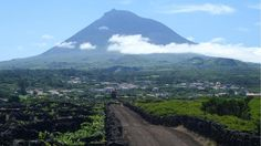 The adventure playground of the Azores Vineyards on Pico island