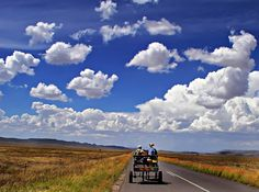 A donkey cart through the Karoo, Wastern Cape, South Africa