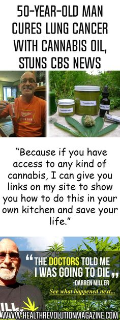 The effects of cannabis oil in the case of various cancer types have been confirmed by numerous studies and testimonies. Darren Miller is one of those people who have used this oil to cure his 'incurable' lung cancer, and managed to survive, and live against the odds. Initially, after his diagnosis, doctors informed him thatContinue Reading