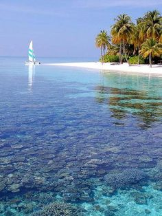 Maldives*.*I must visit this heavenly awesome place one day.