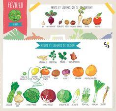 Calendrier fruits et légumes de saison - Février  Claire Sophie Pissenlit @clairesophieofficial