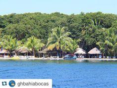 #Repost @ghbahiabocas  Playa  de las Estrellas isla Colón.  Starfish beach Colon island. Bocas del Toro Panamá.  #bocasdeltoro #Caribe #playabrisaymar #navegando #caribbean #beachtime #boatride