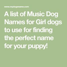 A list of Classic Dog Names for Girl dogs to use for finding the perfect name for your puppy! Tough Dog Names, Funny Dog Names, Cute Names For Dogs, Girl Dog Names, Female Dog Names, Cute Baby Names, Puppy Names, Funny Dogs, Yorkie Names
