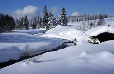 Czech Republic - Böhmerwald im Winter Prague Czech Republic, Magical Forest, European Countries, My Heritage, Mountain Range, Country Life, Winter Wonderland, Snow, Mountains