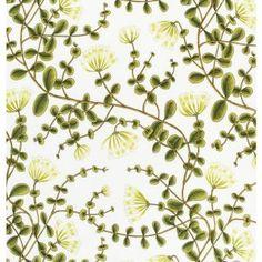 Kuusama - Grön Kaprifol