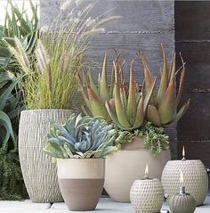 garden design - Andre Planter (and coordinating items) Crate and Barrel Outdoor Planters, Garden Planters, Succulents Garden, Planting Flowers, Planter Pots, Modern Planters, Succulent Planters, Container Plants, Container Gardening
