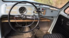 1969 Volkswagen Beetle for sale 100973576