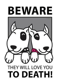 #BullTerrier  anyone else think this may happen to them one day? #love #dogs