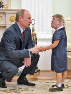 Trump memes, 20 best memes of Donald Trump to give you a good laugh . Cartoon Memes, Funny Memes, Hilarious, Jokes, Caricatures, Tiny Trump, Satire, Political Cartoons, Funny Photos