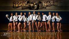 Volleyball Poster Id