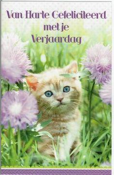 Gefeliciteerdkaart met kitten. Disney Characters, Fictional Characters, Dog Cat, Happy Birthday, Disney Princess, Cats, Animals, Kitty, Red Heads
