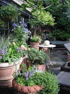 Beautiful little Mediterranean garden or courtyard.  How would this translate to my side garden?