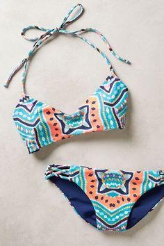 #anthrofave anthro bikini blue