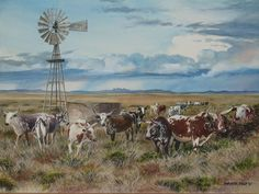 Malcomess Ngunis Cattle by Barbara Philip ~ watercolor countryscape windmill Farm Paintings, Nursery Paintings, Wildlife Paintings, Country Paintings, Landscape Paintings, Ranch, Cow Painting, Watercolor Painting, South African Artists